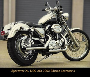 2003_hd_xl1200c_anniversary_edition