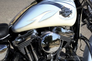 jccs_hd-xl1200custom_00008