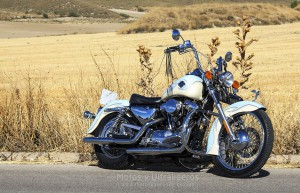 jccs_hd-xl1200custom_00027